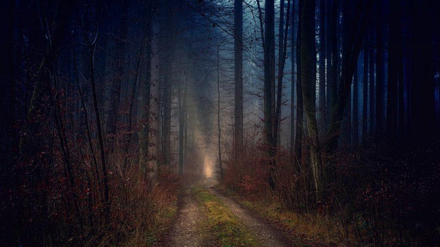 A Mid-October Nights Dream